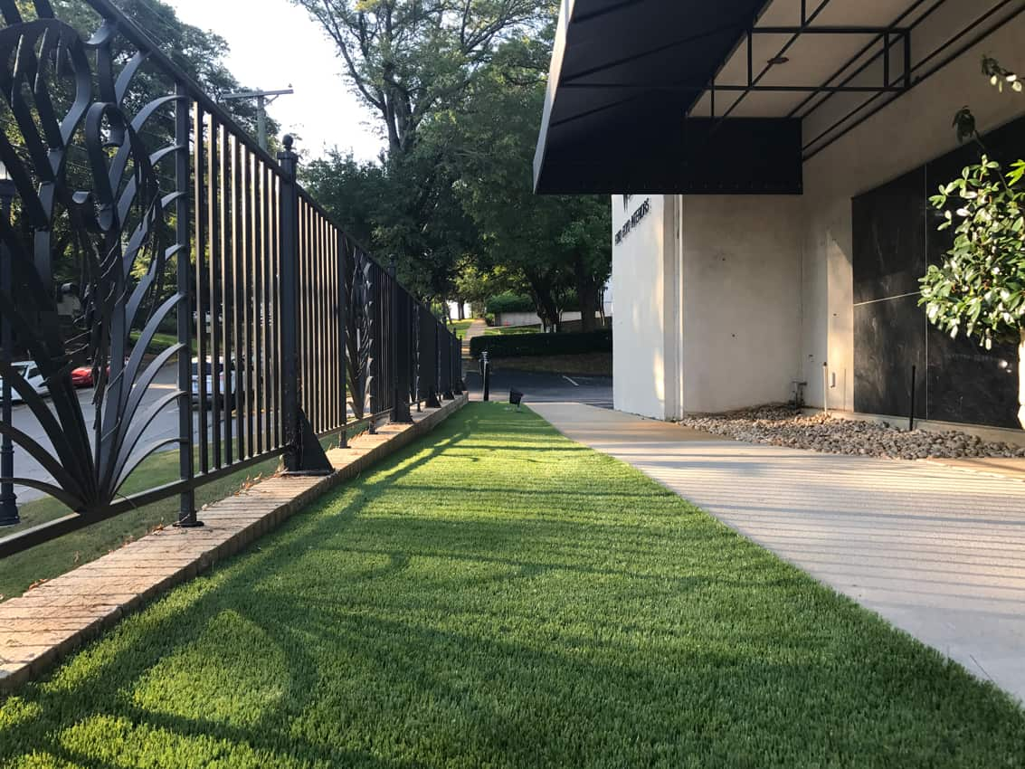 Commercial Pet Turf Application