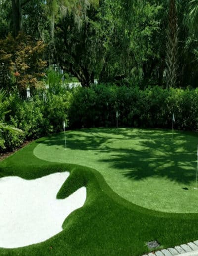 Turf For Putting Greens and Golf Courses