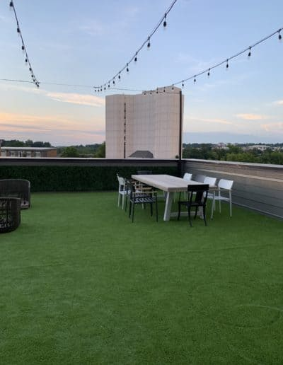 roof top turf